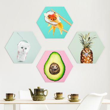 Hexagon Bild Forex 4-teilig - Jonas Loose - Lustige Tiergeschichten