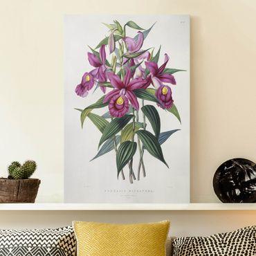 Leinwandbild - Maxim Gauci - Orchidee I - Hochformat 3:2
