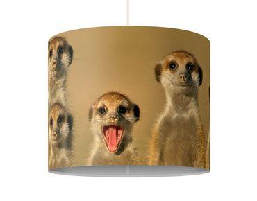 Hängelampe - Meerkat Family