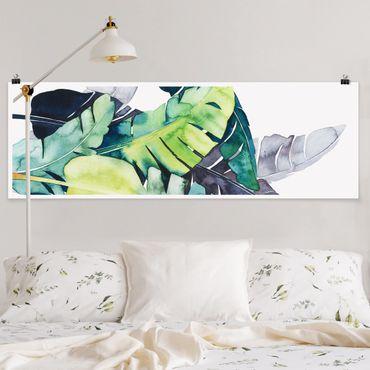 Poster - Exotisches Blattwerk - Banane - Panorama Querformat