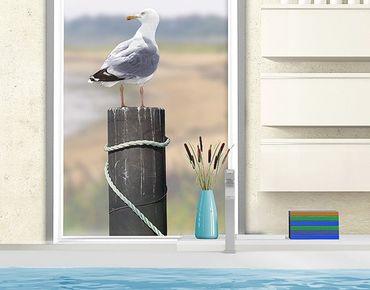 Fensterfolie - Fenstersticker No.YK16 Neugierige Möwe - Fensterbilder