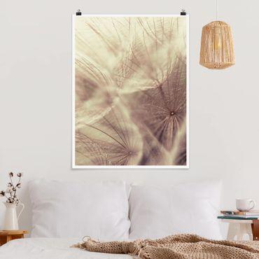 Poster - Detailreiche Pusteblumen Makroaufnahme mit Vintage Blur Effekt - Hochformat 3:4