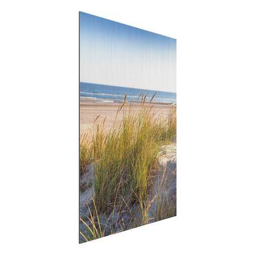 Aluminium Print gebürstet - Stranddüne am Meer - Hochformat 3:2