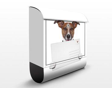 Briefkasten mit Zeitungsfach - Hund mit Brief - Briefkasten mit Tiermotiv
