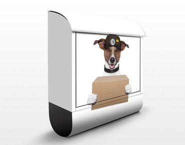Briefkasten mit Zeitungsfach - Hund mit Paket - Briefkasten mit Tiermotiv