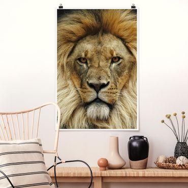 Poster - Wisdom of Lion - Hochformat 3:2
