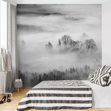 Fototapete - Nebel bei Sonnenaufgang Schwarz Weiß - Fototapete