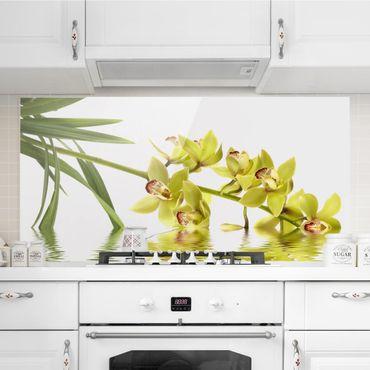 Spritzschutz Glas - Elegant Orchid Waters - Querformat - 2:1