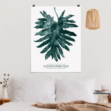 Poster - Smaragdgrüner Philodendron Bipinnatifidum - Hochformat 3:4