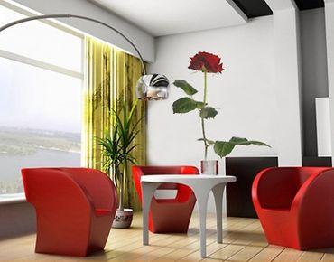 Wandtattoo Rose Ranke No.SB9 Rote Rose