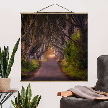 Stoffbild mit Posterleisten - Tunnel aus Bäumen - Quadrat 1:1