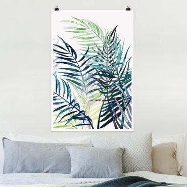 Poster - Exotisches Blattwerk - Palme - Hochformat 3:2