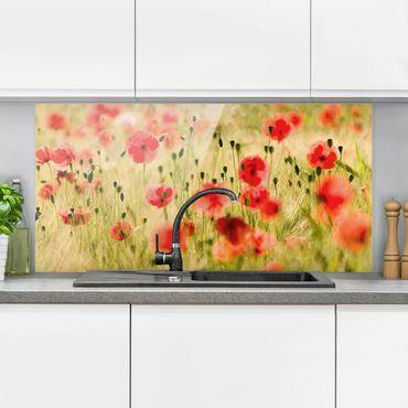 Spritzschutz Glas - Summer Poppies - Querformat - 2:1