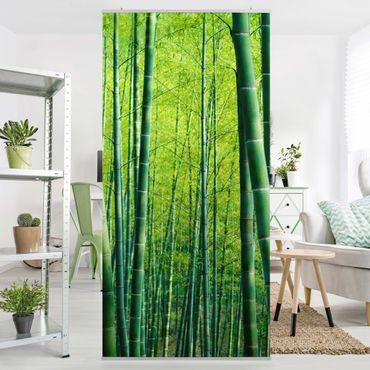 Raumteiler - Bambuswald 250x120cm