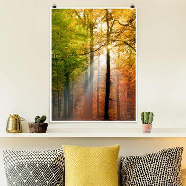 Poster - Morning Light - Hochformat 3:4