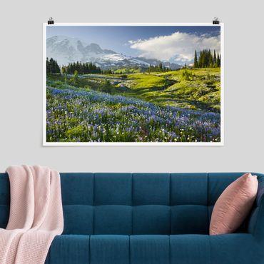 Poster - Bergwiese mit Blumen vor Mt. Rainier - Querformat 2:3