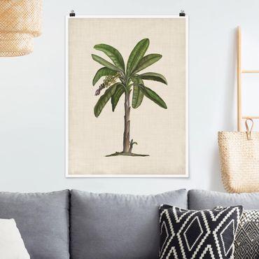 Poster - Britische Palmen II - Hochformat 3:4