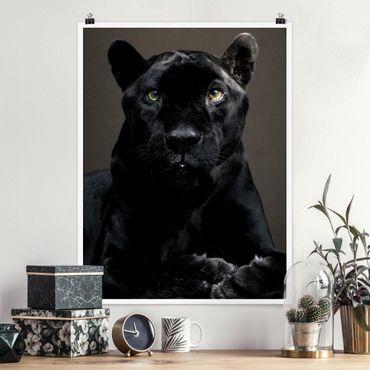 Poster - Black Puma - Hochformat 3:4