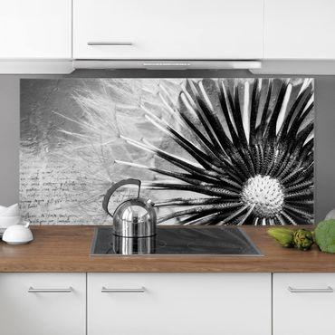 Spritzschutz Glas - Pusteblume Schwarz & Weiß - Querformat - 2:1
