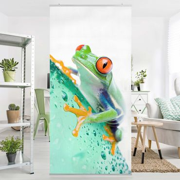 Raumteiler - Frog 250x120cm