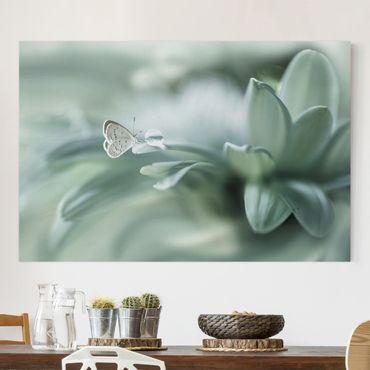 Leinwandbild - Schmetterling und Tautropfen in Pastellgrün - Querformat 2:3
