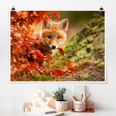 Poster - Fuchs im Herbst - Querformat 3:4