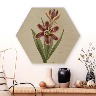 Hexagon Bild Holz - Florale Schmuckstücke II