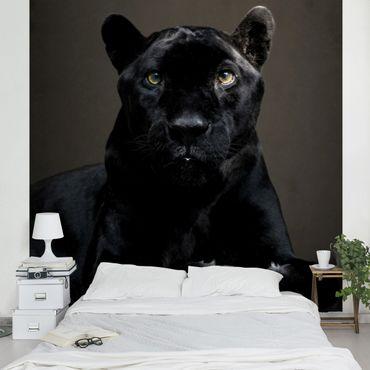 Fototapete Black Puma