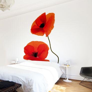 Fototapete Charming Poppies