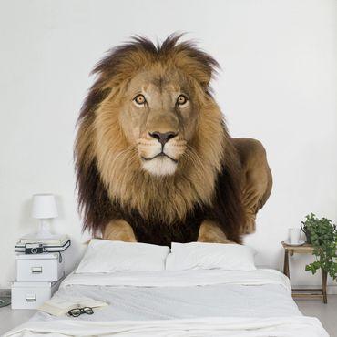 Fototapete König Löwe II