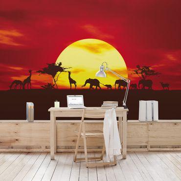 Fototapete Sunset Caravan