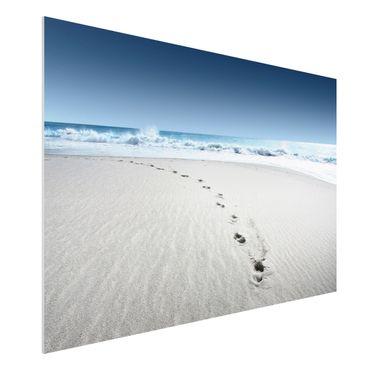 Forexbild - Spuren im Sand