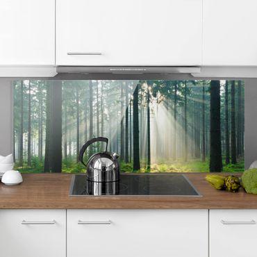 Spritzschutz Glas - Enlightened Forest - Panorama - 5:2