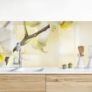 Küchenrückwand - Orchideen Zweig