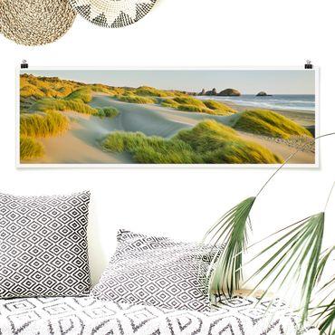 Poster - Dünen und Gräser am Meer - Panorama Querformat