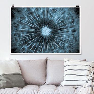 Poster - Blau getönte Pusteblume - Querformat 2:3