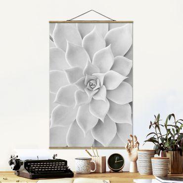 Stoffbild mit Posterleisten - Kaktus Sukkulente - Hochformat 3:2