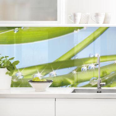 Küchenrückwand - Fresh Green