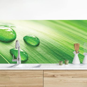Küchenrückwand - Bananenblatt mit Tropfen