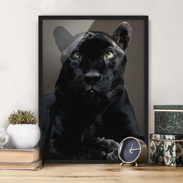 Bild mit Rahmen - Black Puma - Hochformat 3:4