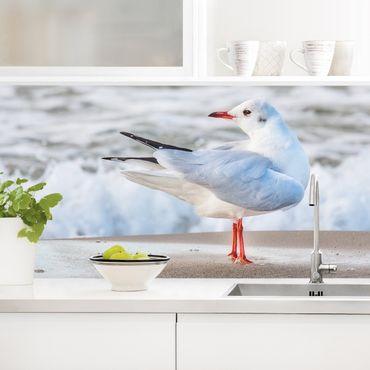 Küchenrückwand - Möwe am Strand vor Meer