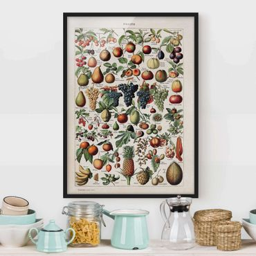Bild mit Rahmen - Vintage Lehrtafel Früchte - Hochformat 4:3