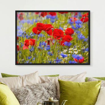 Bild mit Rahmen - Sommerwiese mit Mohn und Kornblumen - Querformat 3:4