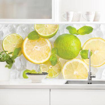 Küchenrückwand - Zitrusfrüchte auf Eiswürfel