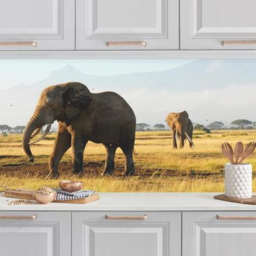 Küchenrückwand - Elefanten vor dem Kilimanjaro in Kenya