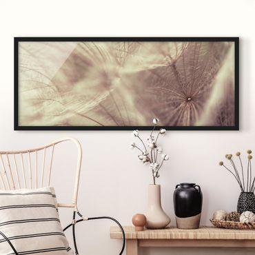 Bild mit Rahmen - Detailreiche Pusteblumen Makroaufnahme mit Vintage Blur Effekt - Panorama Querformat
