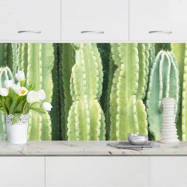 Küchenrückwand - Kaktus Wand