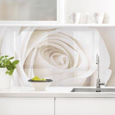 Küchenrückwand - Pretty White Rose