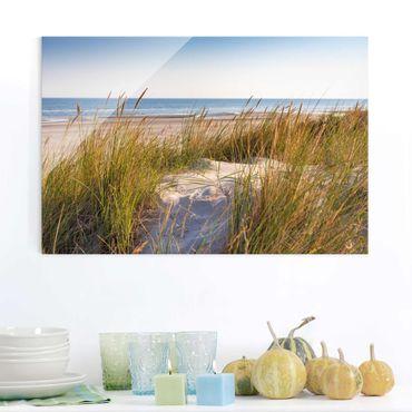 Glasbild - Stranddüne am Meer - Querformat 2:3
