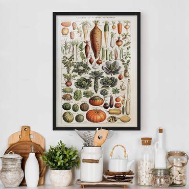 Bild mit Rahmen - Vintage Lehrtafel Gemüse - Hochformat 4:3